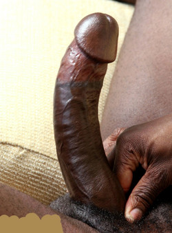 Really big erect black cocks amateur..