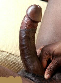 Really big erect black cocks amateur..